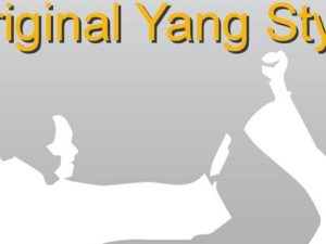 Corsi Tai Chi Chuan principianti 2017
