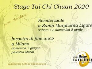 Stage Tai Chi Chuan